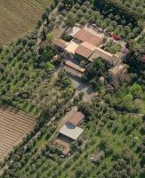 Azienda Agricola Casale Marchese - Frascati